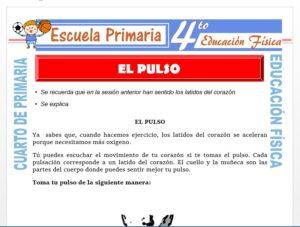 Modelo de la Ficha de El Pulso para Cuarto de Primaria