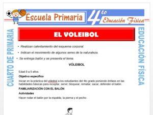 Modelo de la Ficha de El Voleibol para Cuarto de Primaria