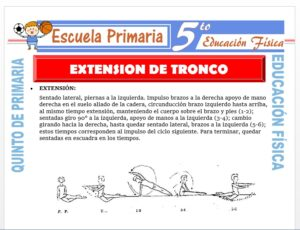 Modelo de la Ficha de Extensión del Tronco para Quinto de Primaria