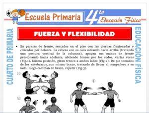 Modelo de la Ficha de Fuerza y Flexibilidad para Cuarto de Primaria