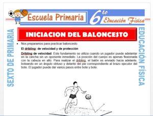 Modelo de la Ficha de Iniciación del Baloncesto para Sexto de Primaria