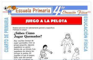 Modelo de la Ficha de Juego a la Pelota para Cuarto de Primaria