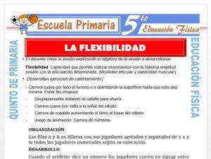 Modelo de la Ficha de La Flexibilidad para Quinto de Primaria