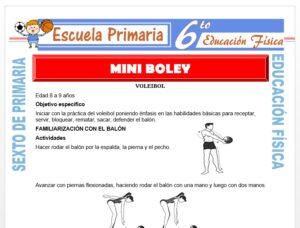 Modelo de la Ficha de Mini Vóley para Sexto de Primaria