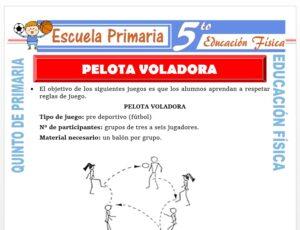 Modelo de la Ficha de Pelota Voladora para Quinto de Primaria