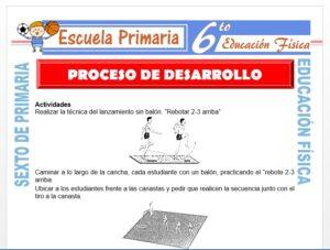 Modelo de la Ficha de Proceso de Desarrollo para Sexto de Primaria