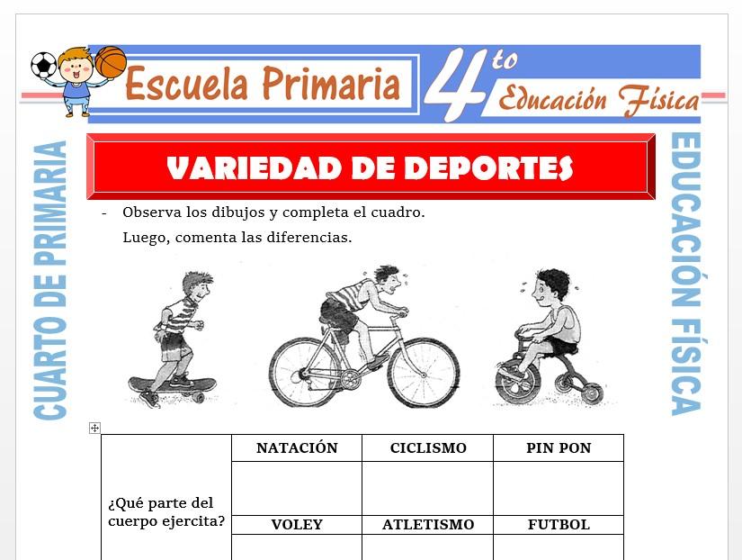 Modelo de la Ficha de Varios Deportes para Cuarto de Primaria